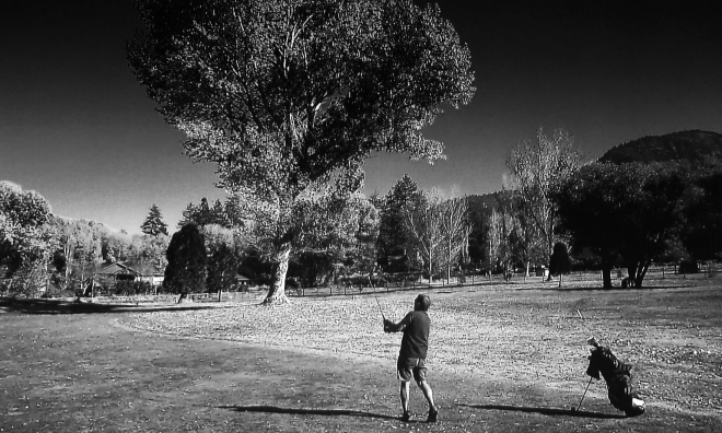 Pitch shot pine mountain club BW